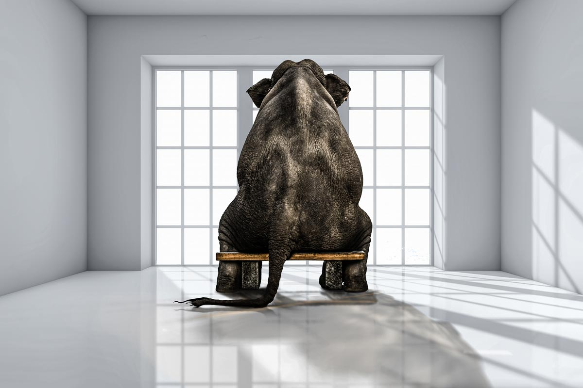 Unconscious bias: dealing with the elephant in the room